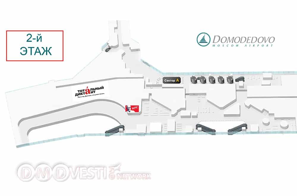 схема расположения места проведения Тотального диктанта в аэропорту Домодедово