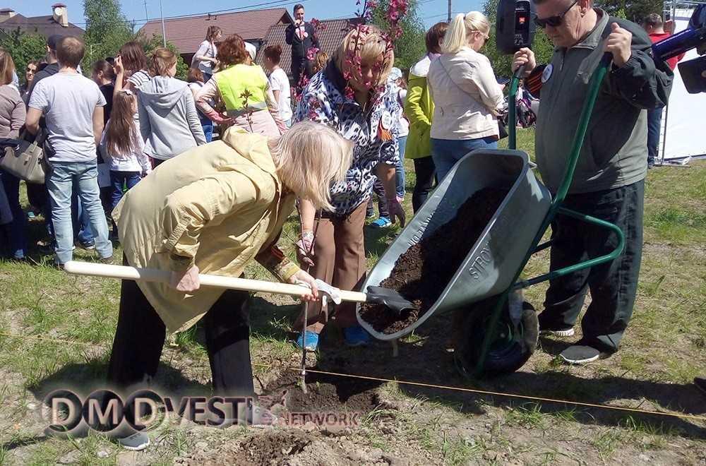 Акция «Лес Победы» собрала более 5000 жителей Домодедово