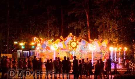 В домодедовском парке Ёлочки вновь пройдет Ночь в парке