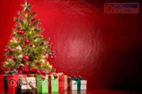 роскачество-рекомендует-как-выбрать-новогоднюю-ёлку