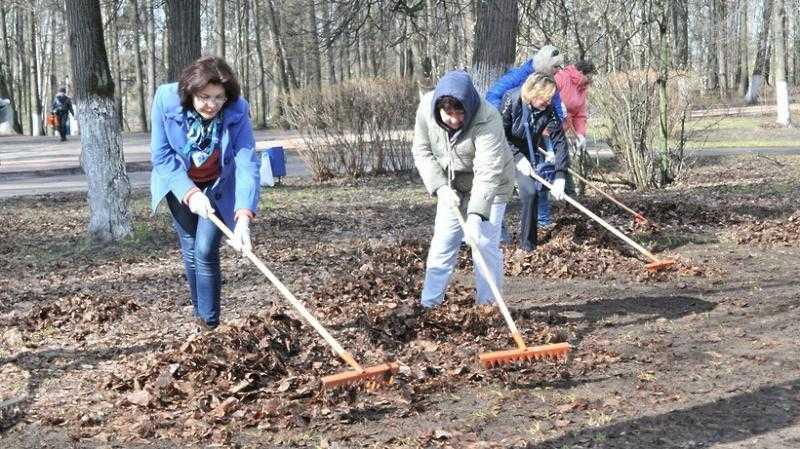 20 апреля во всех муниципалитетах Московской области пройдет общеобластной субботник