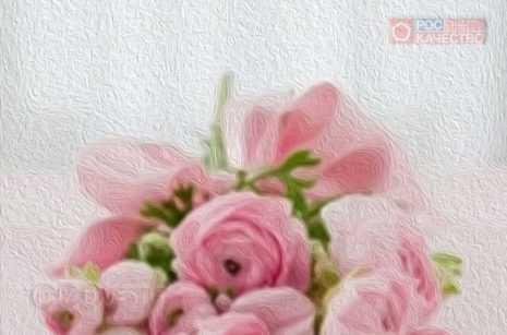 #КАЧЕСТВОЖИЗНИ: даём рекомендации по выбору цветов