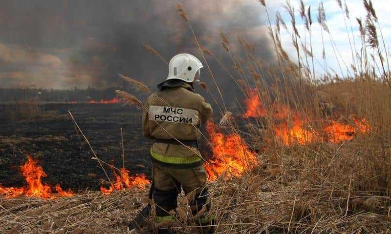 В преддверии наступления на территории Московской области пожароопасного сезона 2019 года Подольский филиал ГКУ МО «Мособллес» напоминает
