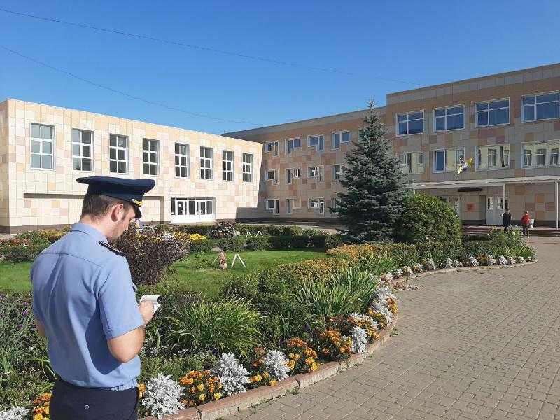 Благоустройство школ и детских садов городского округа Домодедово
