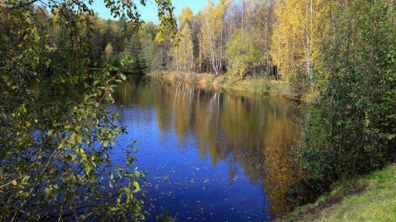 Жители Подмосковья могут получить сведения из государственного водного реестра в режиме онлайн через РПГУ МО