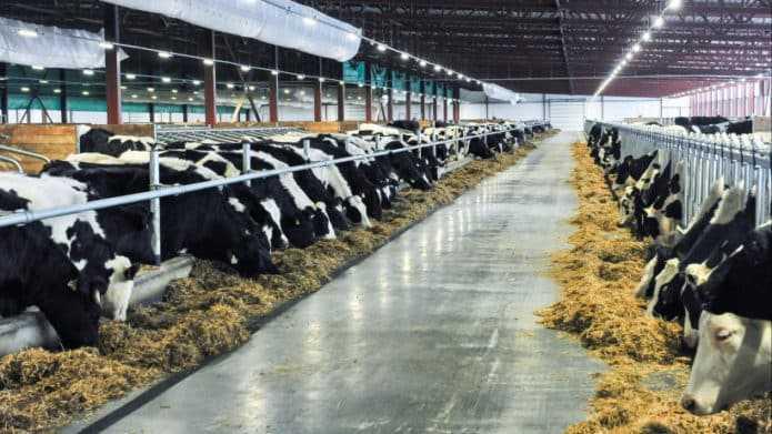 Интерактивная карта «Здоровая ферма» заработала в Подмосковье