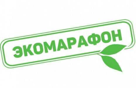 Традиционный осенний «Эко – марафон ПЕРЕРАБОТКА «Сдай макулатуру – спаси дерево!» стартует в Подмосковье