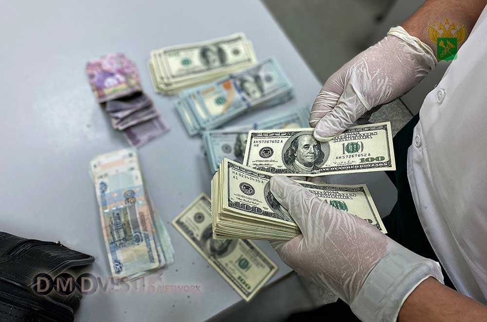 Домодедовская таможня присекла контрабанду денег новости домодедово
